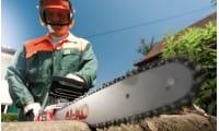 Бензопилы и электропилы